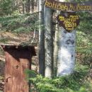 Nekje v gozdu stoji zanimiva ¨hiška¨