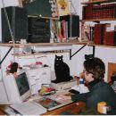 mačka; kontrolor :)))