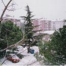 Sneg v izoli