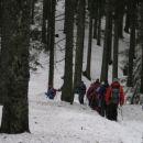 V pohorskih gozdovih