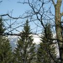 Slutimo spodnje Bohinjske gore