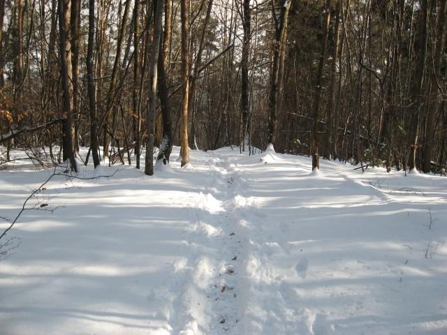 Gaz v snegu - lepota zime