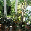 še enkrat april 2007, čakamo, da nas prestavijo na vrt!