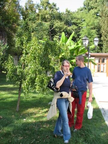 EEE 2008 Mira - foto