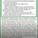 Moldavit opis