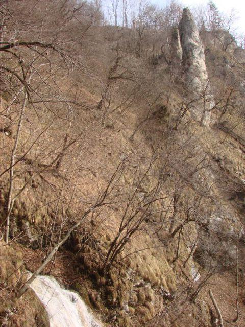 Bohor 2010 - foto