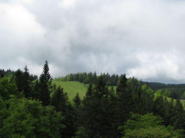Menina planina (jun.2016) - foto