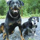 Zoya (8,5let) in Oliver (15,5 let)