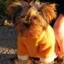 Elly z novim puloverčkom